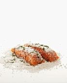 Lachsfilet mit Meersalz und Dill