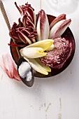 Radicchio, red cabbage and chicory