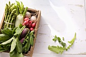Various types of vegetables in a box