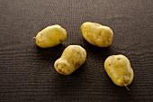 Sieglinde potatoes