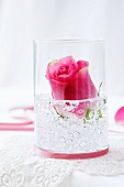 A rose in a glass with decorative stones