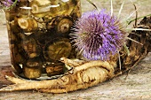 Common or Fuller's teasel - tincture