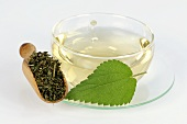 Nettle tea with fresh and dried leaves