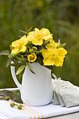 St. John's wort flowers in a jug