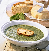 Vellutata di spinaci (Spinach soup with toasted white bread)