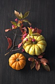 Two ornamental gourds with spindle twig