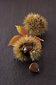 Sweet chestnuts in their shells
