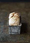 Rye bread in a loaf tin