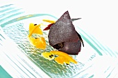 Chocolate truffle confection with citrus fruit confit