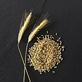 Ears and grains of rye on stone background
