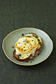 Apple slices and goat's cheese on toast