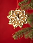 Gingerbread star on Christmas tree