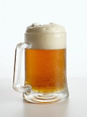 Glass tankard of draught beer