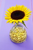 Sunflower oil with sunflower seeds and sunflower