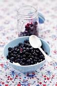 Sugared bilberries with cream (Vaccinium myrtillus)