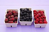 Tayberries (raspberry-blackberry cross), blackberries and raspberries