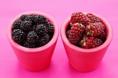 Blackberries & Tayberries (cross between raspberry & blackberry)