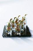 Caramelised tuna on cocktail sticks