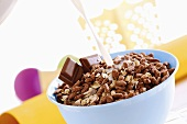Muesli with chocolate and milk