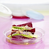 Radicchio salad with tuna and avocado in plastic box