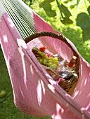 Picnic basket in hammock