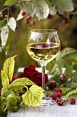 A glass of white wine among raspberries