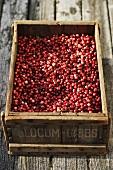 Cranberries in a box