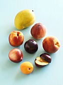 Various types of stone fruit