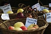 Verschiedene Apfelsorten in Körben