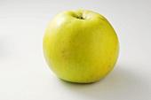 Apple, variety: 'Seestermüher Zitronenapfel'