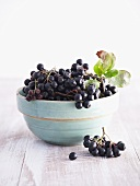 Chokeberries (Aronia berries) in ceramic bowl