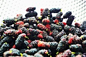 Thai mulberries