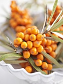 Sea buckthorn berries in dish (close-up)