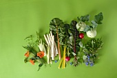 Various types of spring vegetables with herbs