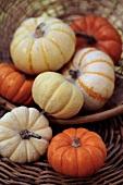 Assorted ornamental gourds in basket
