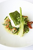 Halibut with herb crust on spring vegetables