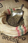 Coffee beans in jute sack with scoop