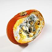 Mouldy pumpkin