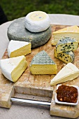 Various organic cheeses on chopping board