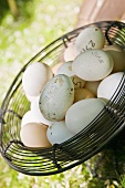 Fresh hens' eggs in wire basket