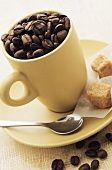 Coffee beans in cup, cane sugar cubes in saucer
