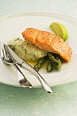 Salmon trout with fennel mashed potato and asparagus