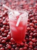 Home-made cranberry lemonade in glass