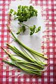 Chives and curly leaf parsley