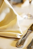 Place-setting with white fabric napkin (close-up)