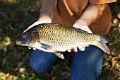 Boy holding a carp