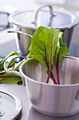 Pans and beetroot leaves