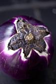 Purple aubergine (close-up)