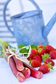 Rhubarb and strawberries, watering can in background