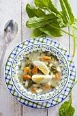 Sorrel soup with boiled egg